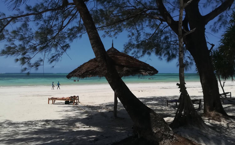 Appartamenti Zanzibar Maisha Marefu 16
